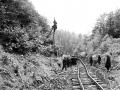 Eastern Eisenbahnlinie_diverzija 1