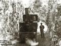 Ostrica, lokomotiva